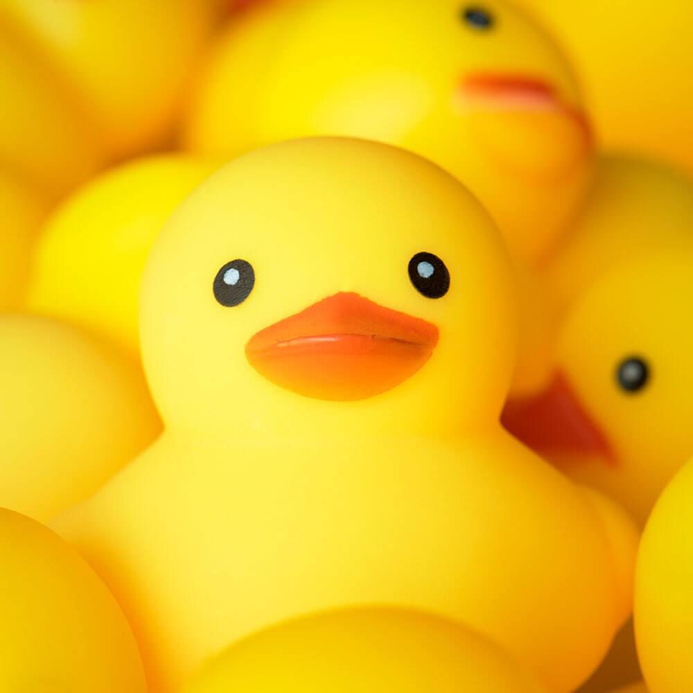 ברווז גומי צהוב במקלחת עם מים חמים מהדוד שמש